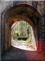 ST5574 : Railway arch through into Leigh Woods by Linda Bailey