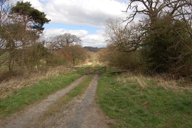 Track towards Greencroft Park