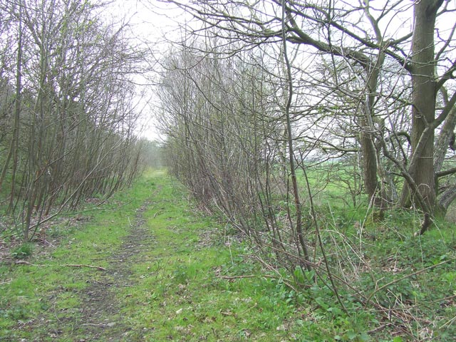 Course of Old Railway, Pillaton, Staffordshire
