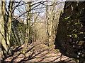 SE1323 : Footpath in a man-made canyon, Southowram by Humphrey Bolton