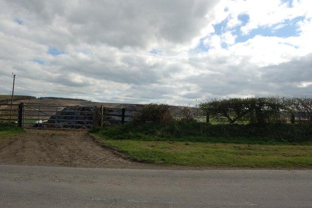 Fields backing on to moorland below Hedley Hill