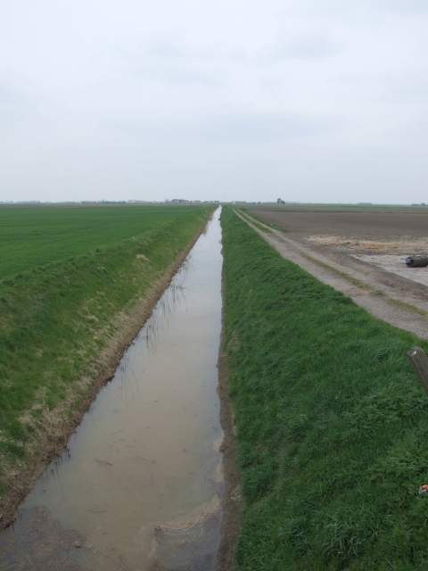 Drain near Poplar Farm, March