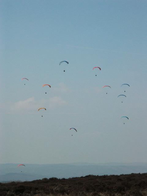 Long Ridge Gliding Club Essay Sample