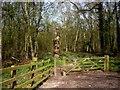SJ6581 : Gate into Parkmoss Wood by Tom Pennington