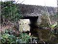 SN1035 : Brynberian bridge by ceridwen