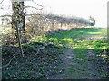 TG3425 : Footpath off Broad Fen Lane by Nick Smith