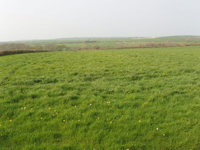 Grass Landscape Grass field grass field near sensham d brint grass field grass field near sensham d workwithnaturefo