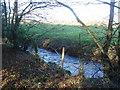 TF9634 : River Stiffkey by David Williams