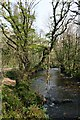 SX3467 : The River Lynher below Cadson Bury Fort by Tony Atkin