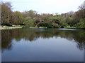 SM9618 : Withybush lake by ceridwen