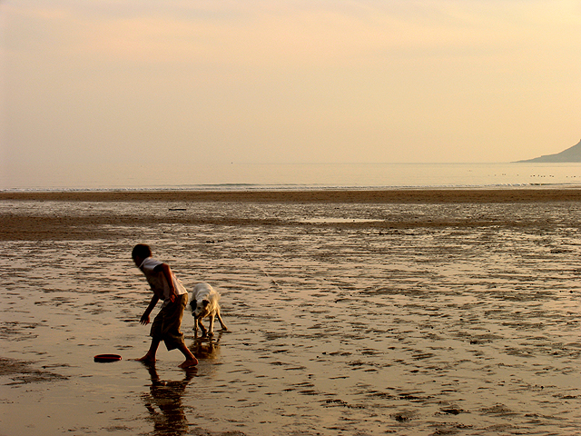 Caswell Beach: A boy and his dog