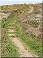 SS1901 : Stepped coast path above Wanson Mouth by David Hawgood