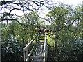 SJ4355 : Bridge Stile and Cows near Highfield Farm by John S Turner