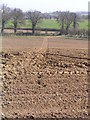 TG3133 : Footpath through ploughed field by Helen Hanley