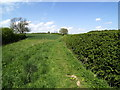 TA1735 : Roe Hill Footpath by Andy Beecroft