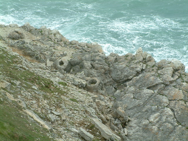 Fossil Forest near Lulworth Cove