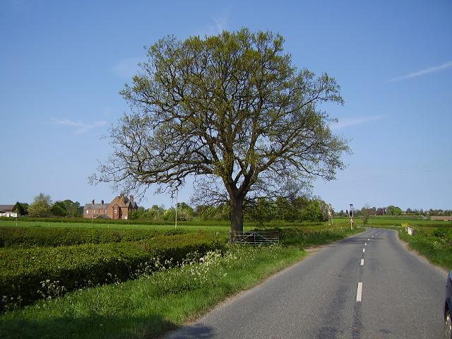 B4116 towards Clare's Barn Farm