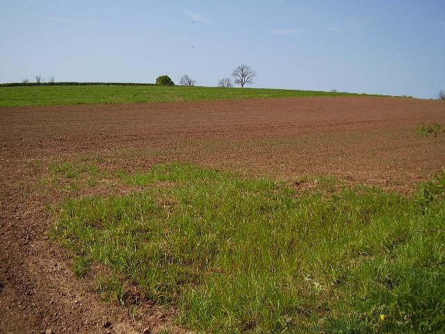 Field from B4116