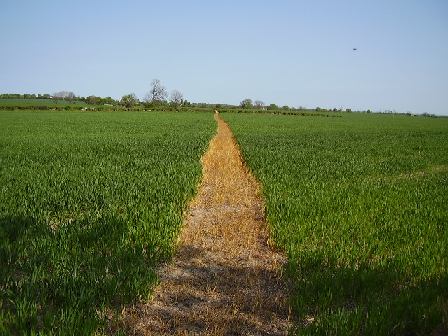 Footpath to Little Orton