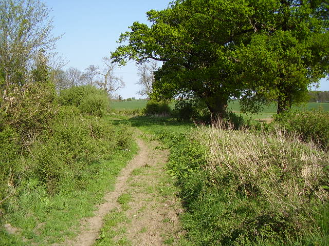 Bridleway approaches 'Other Route with Public Access'