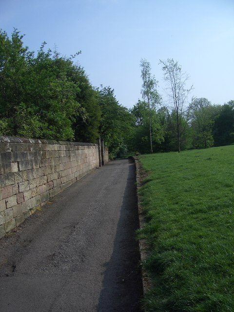 Darley Slade, prehistoric trackway, looking South