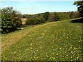 SE3010 : Longfields Parkland Darton by John Fielding