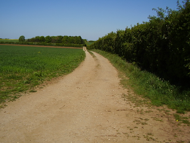 Track to wood from B1178