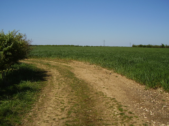 Corner of the footpath near Nocton Heath