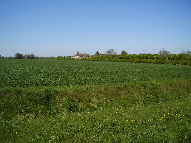 A view towards Poaches Patch - Metheringham Low Fields