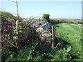 SM8631 : Trewalter/Trewallter Llwyd burial chamber by ceridwen