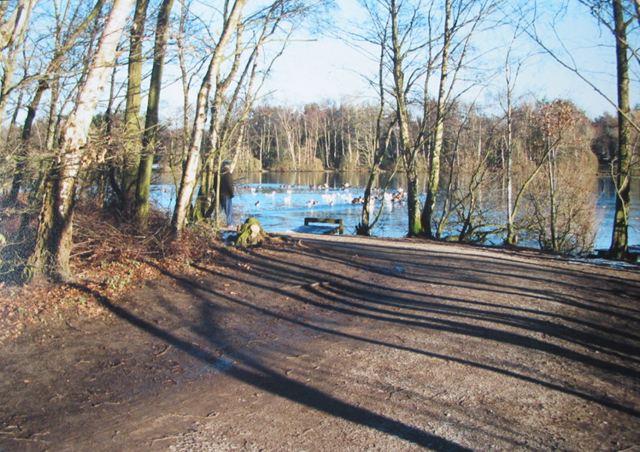 Long winter shadows on Shakerley Mere