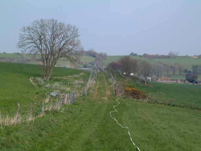 Roman Road near Tolpuddle