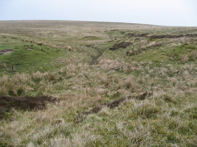 A small stream emerging from rough moorland