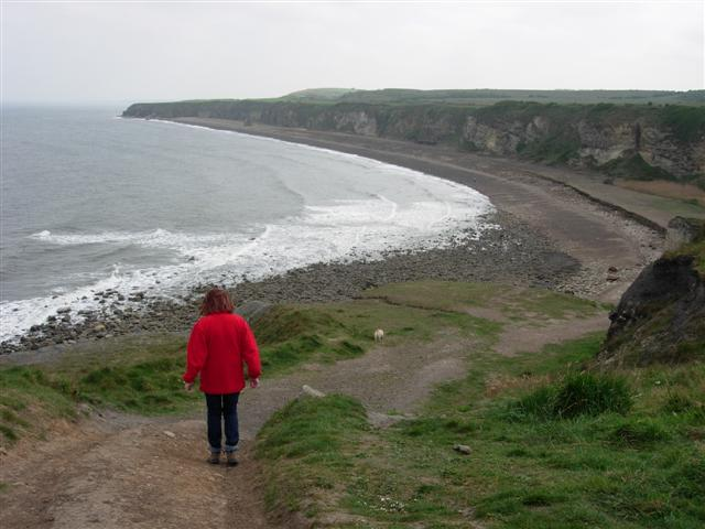 The Blast Beach viewed from Nose's Point