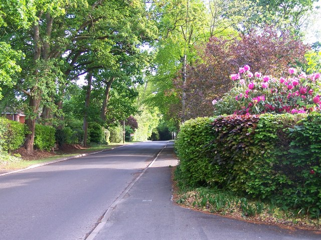 Whinwhistle Road, East Wellow