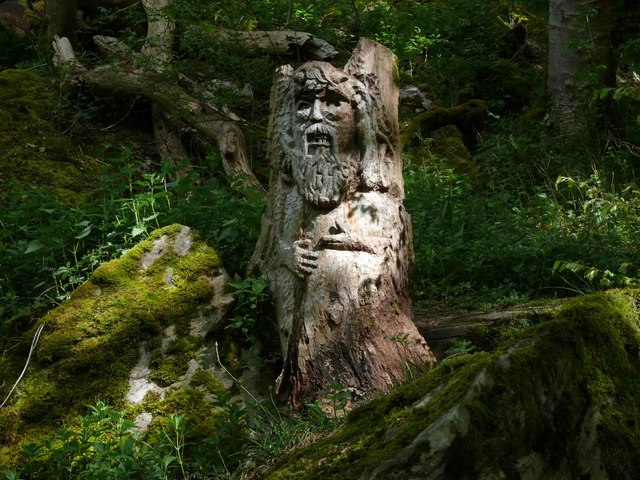 Carved tree stump