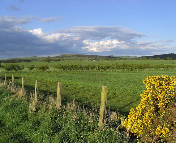 Farmland near East Bolton Farm