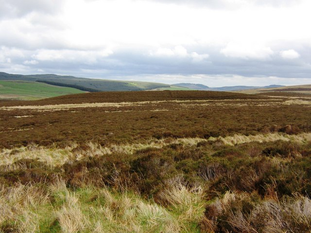 Moorland near Griffin Forest