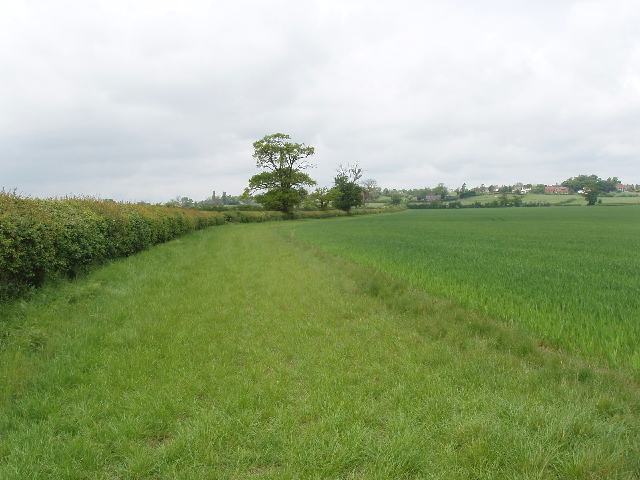 Wheat field, view to Weedon