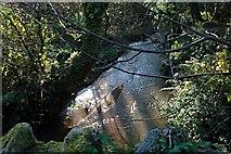 SW9554 : Stream near Gonnamarris by Tony Atkin