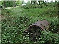 TQ2129 : Abandoned roller in Cinderbank Copse by Andy Potter