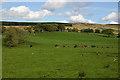 NS3480 : Darleith Farmland by George Rankin