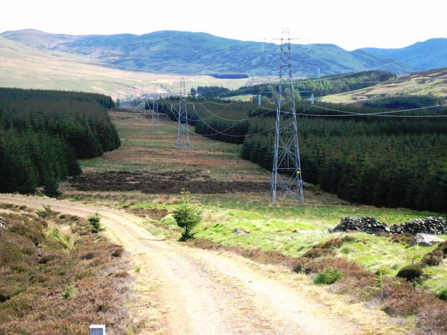 High Voltage Pylons, Griffin Forest