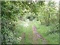 SP5730 : Buckingham Lane by Snidge