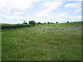 TL0532 : Portobello Farm by ian saunders