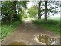 TF8036 : View east down North Belt near Barwick House, Little Barwick by Nigel Jones