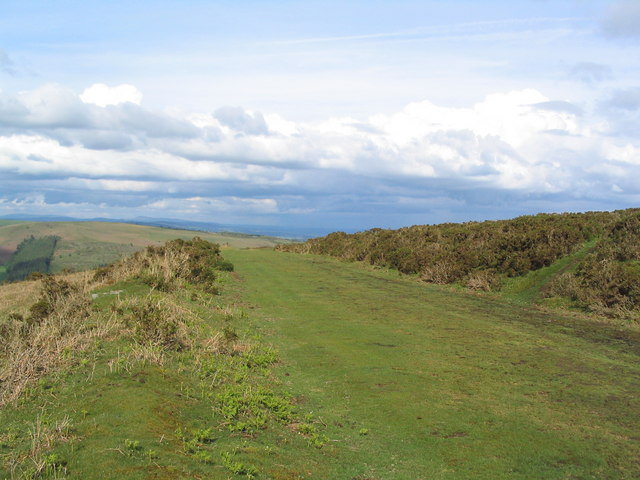 Old racecourse, Hergest Ridge