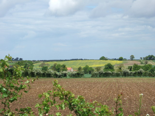 Open countryside in Norfolk