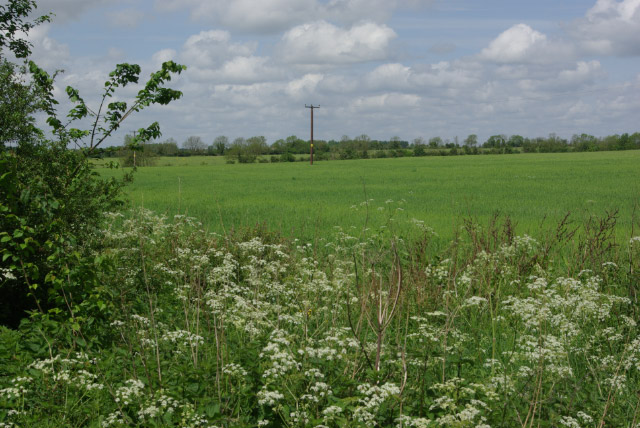 Farmland east of Middleton Stoney