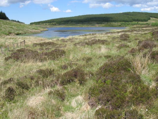 Loch Scalloch
